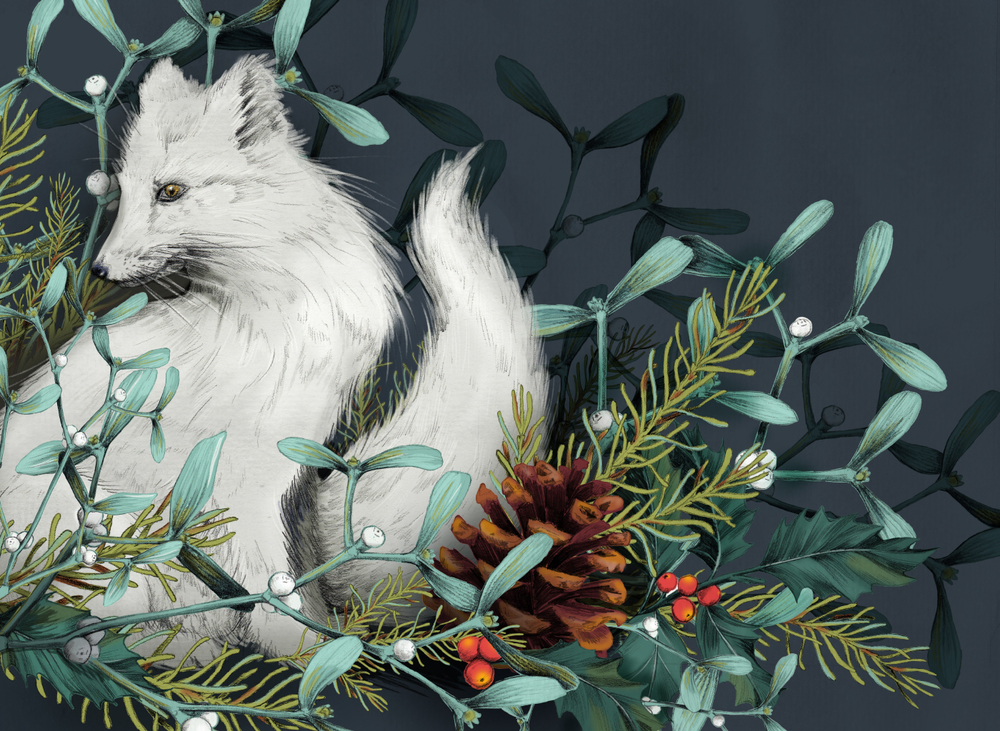 fig. 1. Holiday illustration: Arctic fox, holly, pinecone and mistletoe