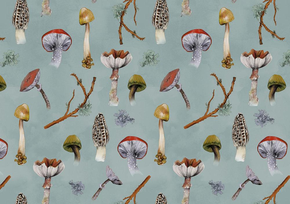 fig 2. Mushroom pattern