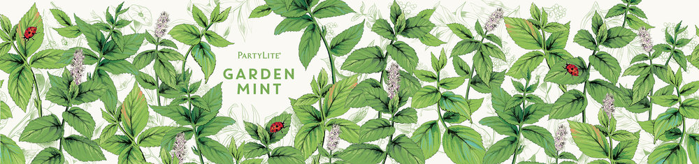 fig. 8. Garden Mint candle wrap pattern illustration