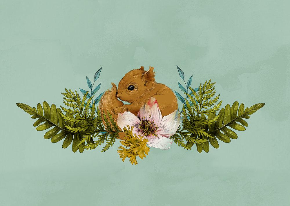 Fig. 2. A baby squirrel in ferns