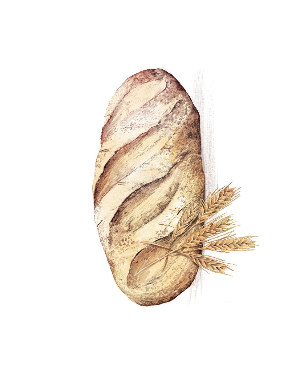 ZeitWissen_Bread_Gluten_LaScarlatte_5.jpg