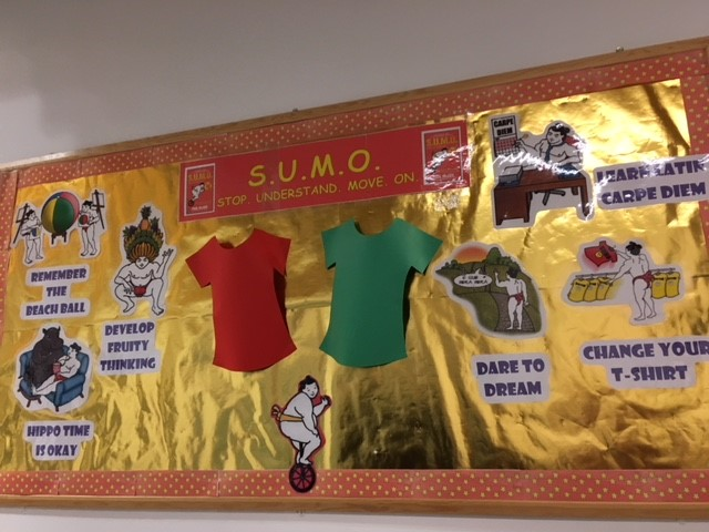 Bushbury Hill Primary School SUMO display