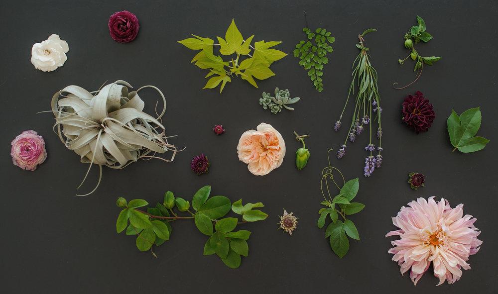 Website-flowers.jpg