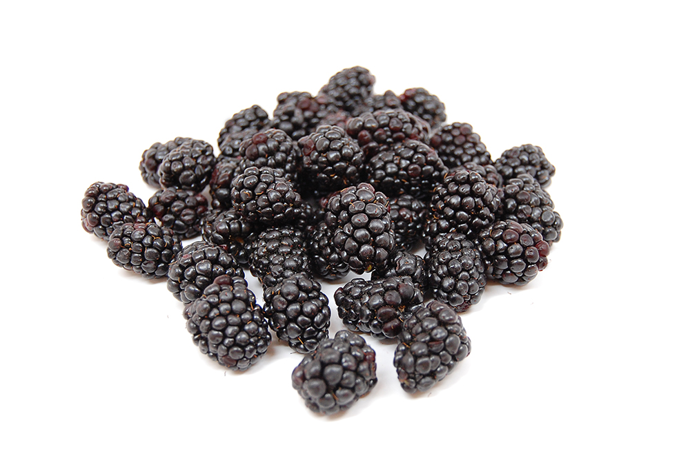 Blackberries_Scattered_WhiteBG.jpg