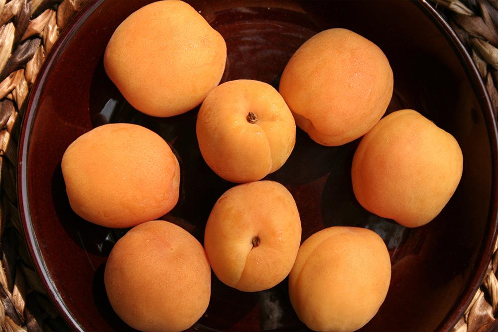 Apricots_WEB_1.jpg