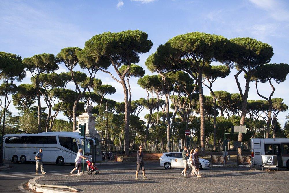 You've Got Flair | Italy 2015 | 004.JPG