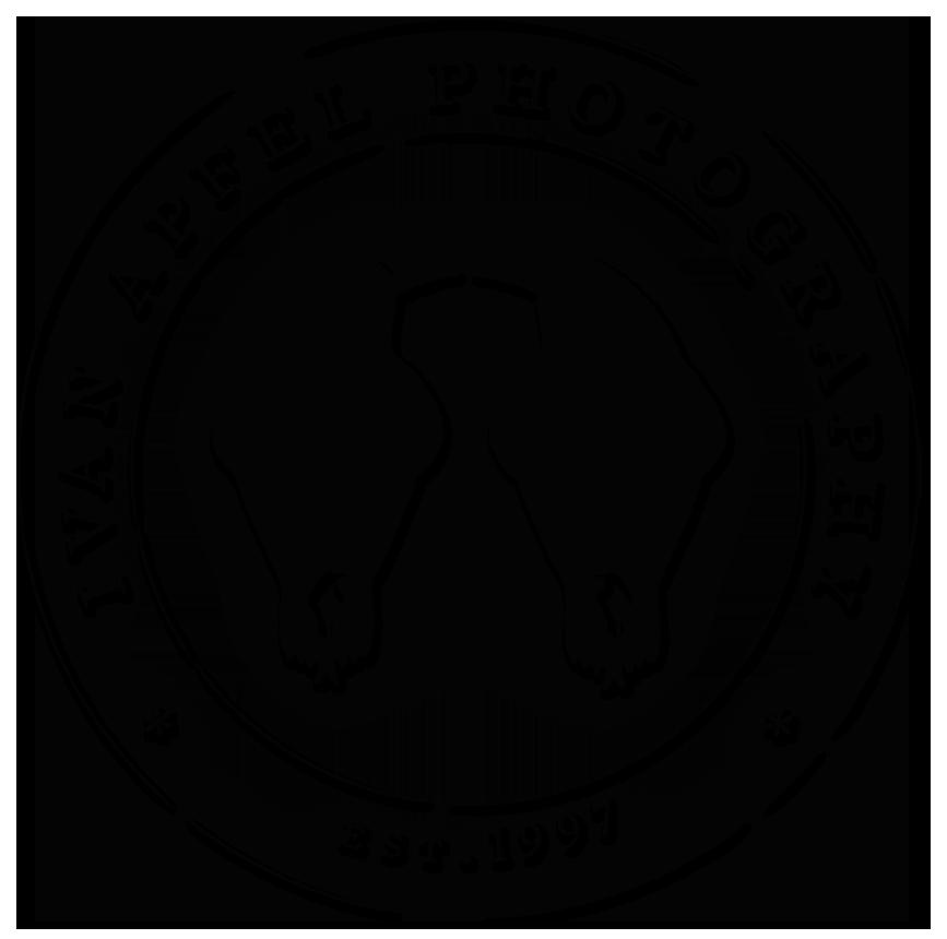 http://www.apfelphotography.com/