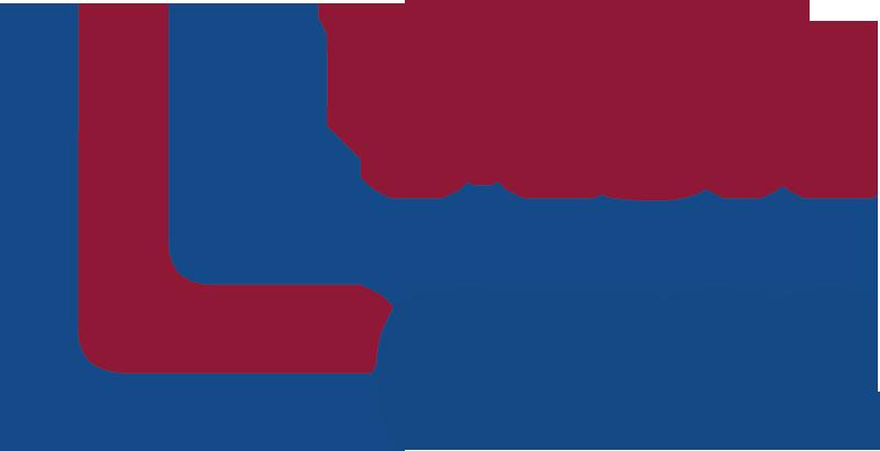 msa-cess-logo.png