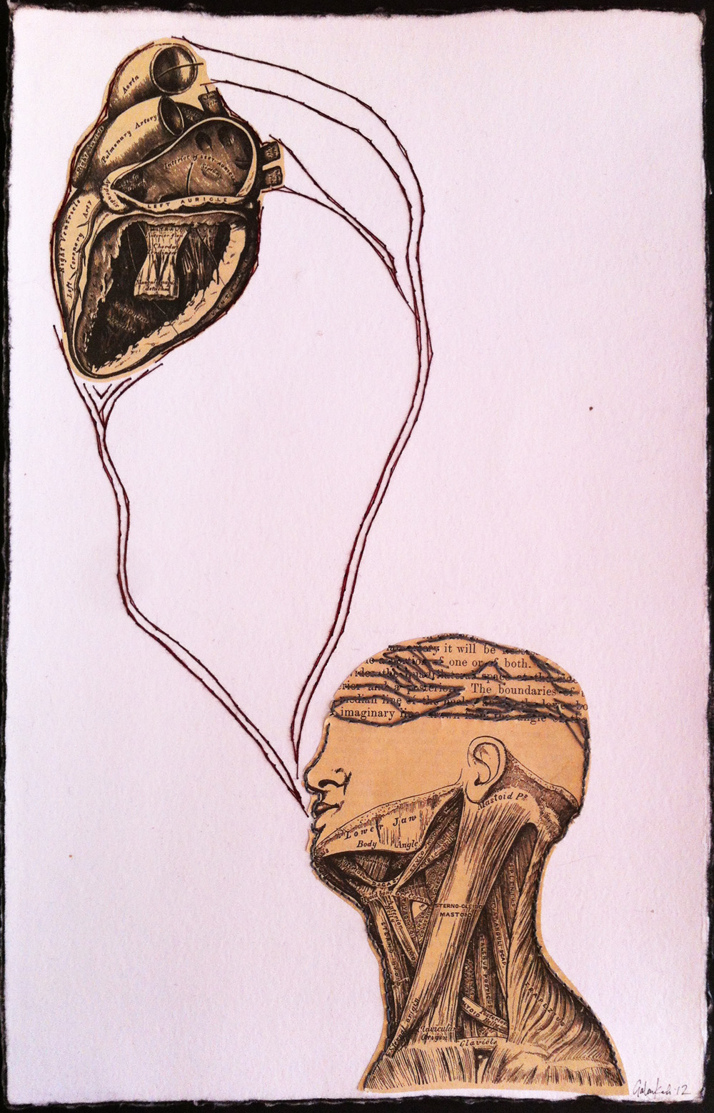 Head/Heart