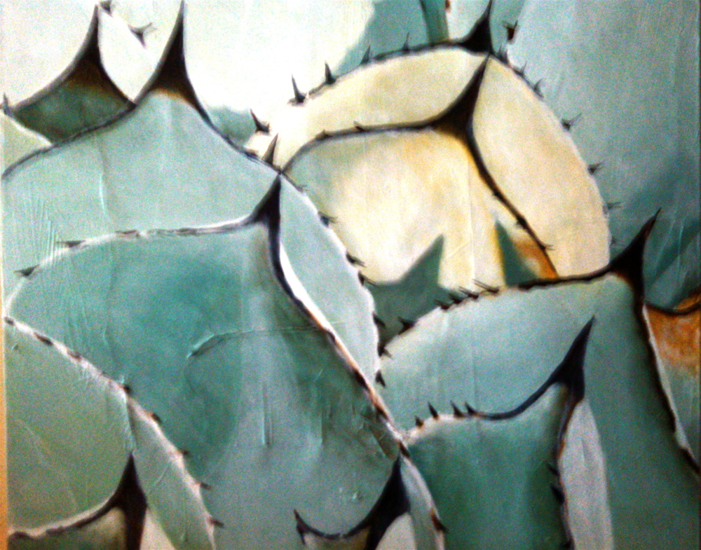 Agave in Cambria
