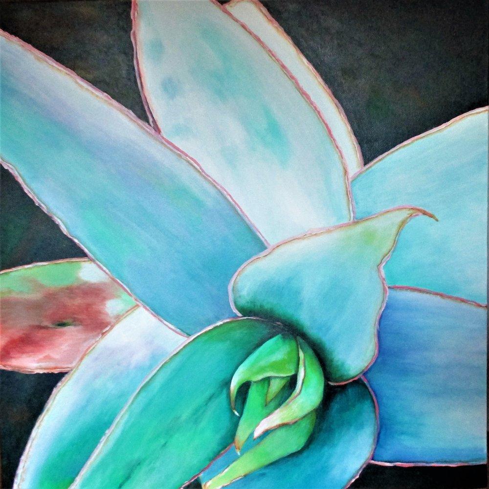 Blue Agave VI