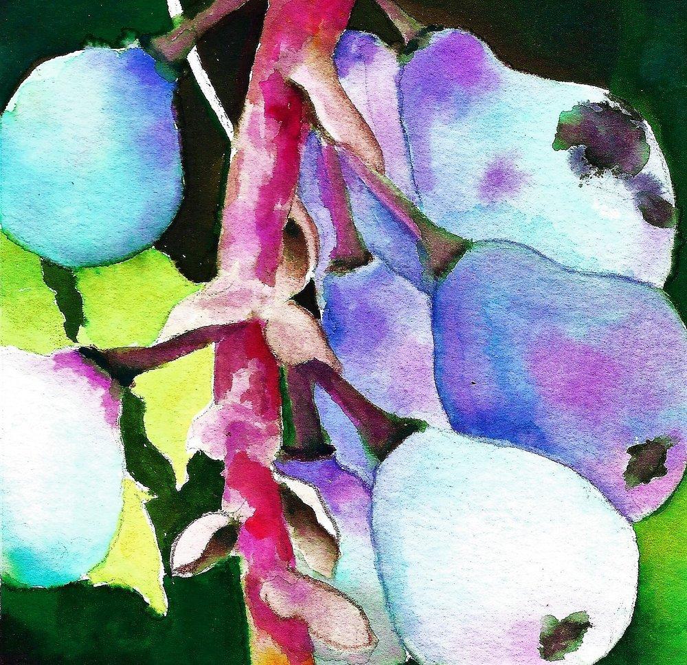 grapes1a.jpg