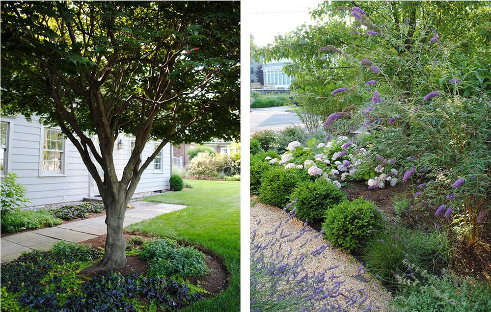 good-gardens-pathway.jpg