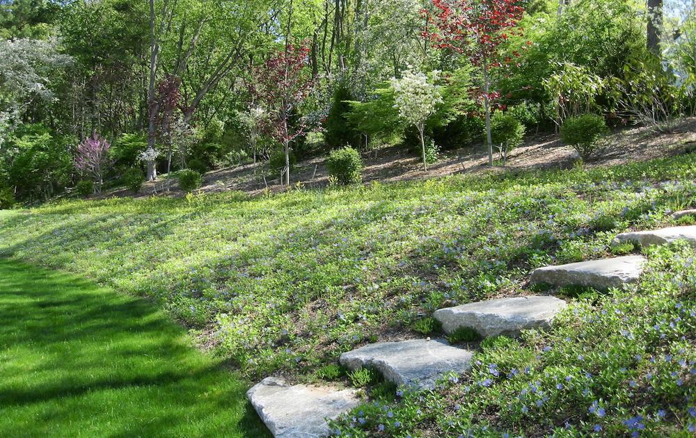 marber-garden.JPG