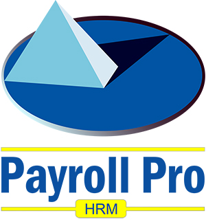 Payroll Pro logo small.jpg