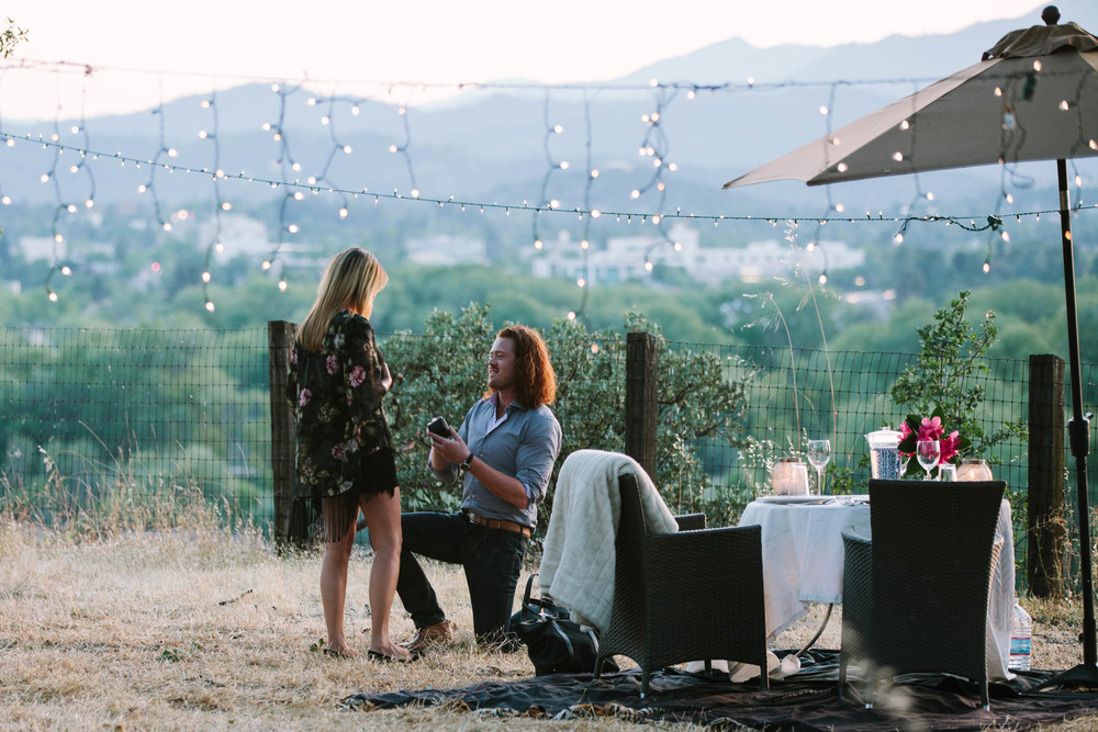 Timo & Sandy • California (proposal)