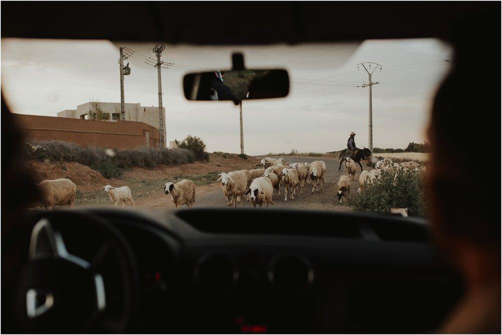 Mehndi Morocco0003.jpg