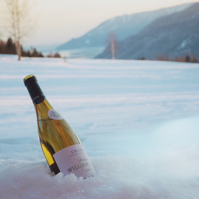 Flashback du mois de mars. Massif + Chablis = Charlevoix ❤️ #massif #hiver #charlevoix #nature #winelove #wine #chablis #lesamisreunis
