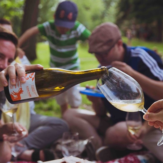 Arbois-Pupillin de notre cher Philppe Bornard. Jura, we love. ❤️ #jura #jurawine #naturalwine #vinnaturel #vinnature #picnic #instawine #instagood #wineporn #winelove