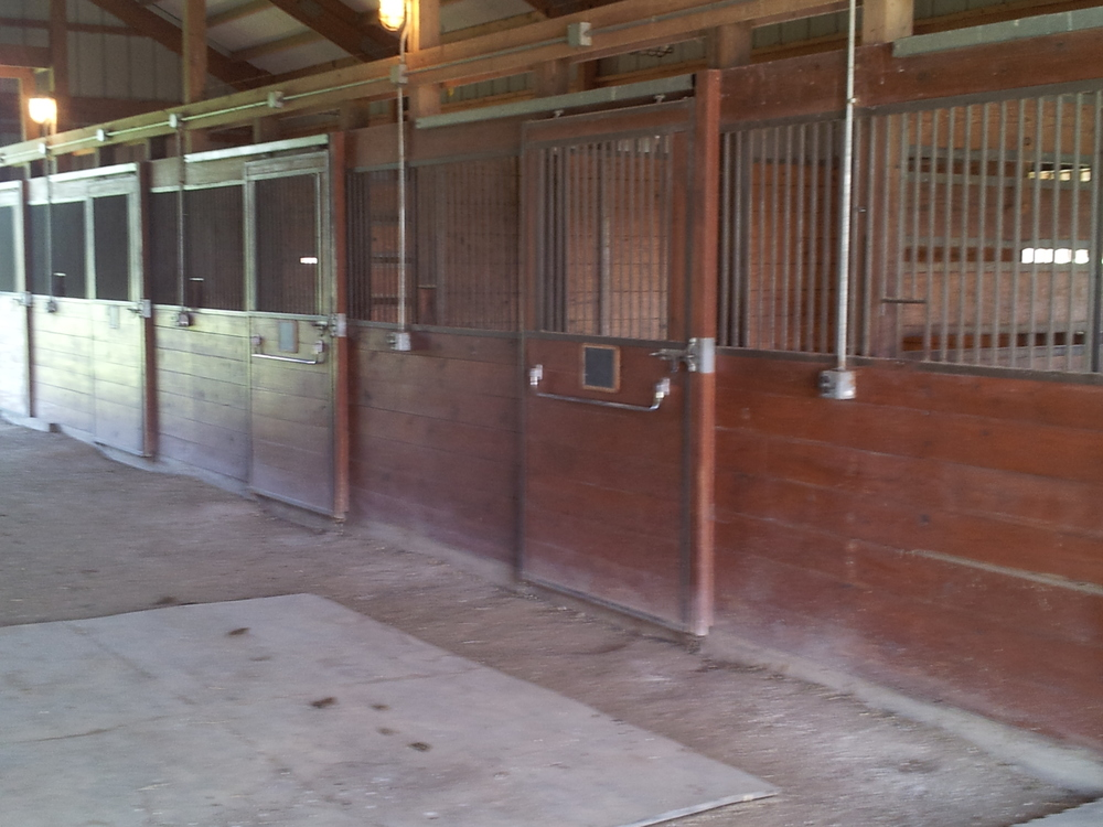Barn before.jpg