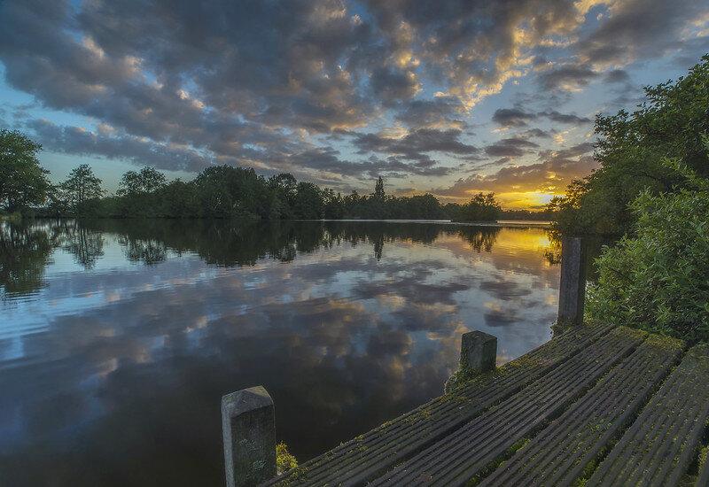 Sassenhein Pond - Groningen