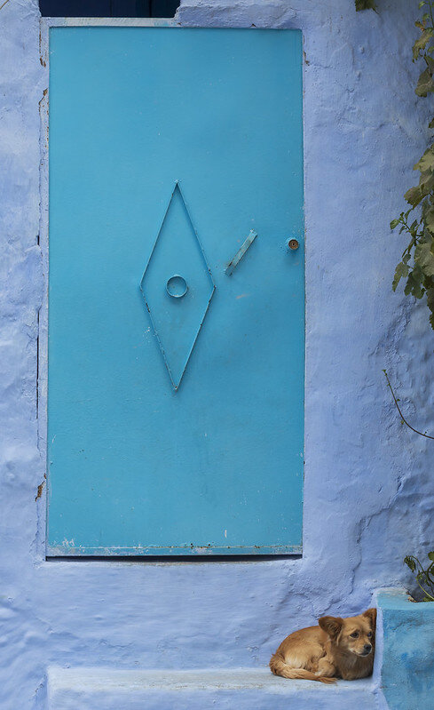 Chefchaouen (Morocco) [❍] ⇢  70 mm - F7.1 - 1/320 sec - ISO 400 - No filter