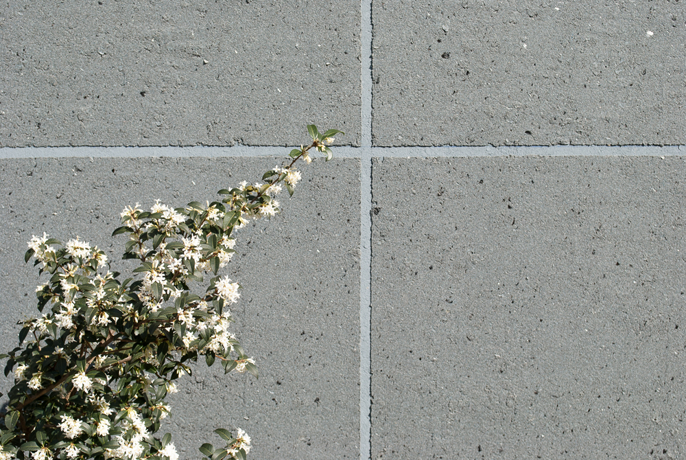 Revêtement de façade pour catalogue Dryvit