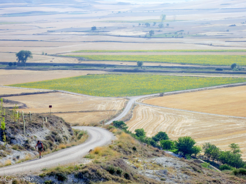 CAMINO DE SANTIAGO   The 900 km long 'Way of St. James' follows the medieval pilgrimage roads that brought the sinners and devout of Europe to Santiago de Compostela, Spain, the final resting place of the remains of James the Apostle.