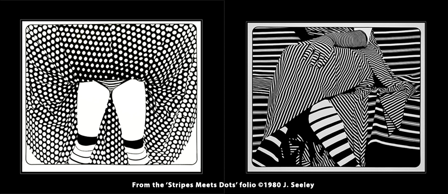 Graphic artist J. Seeley's high contrast images of women dressed in various patterns definitely inspired me to create my pop art series, The Pattern Pinups.