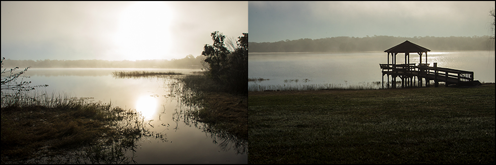 My two shooting spots from the first Day of the Fog. While they each have some merit, neither scene really did much for me, and they weren't my first choice, or my second. The fog had just about lifted, and I stopped to shoot more out of necessity than because I found the moment inspirational.