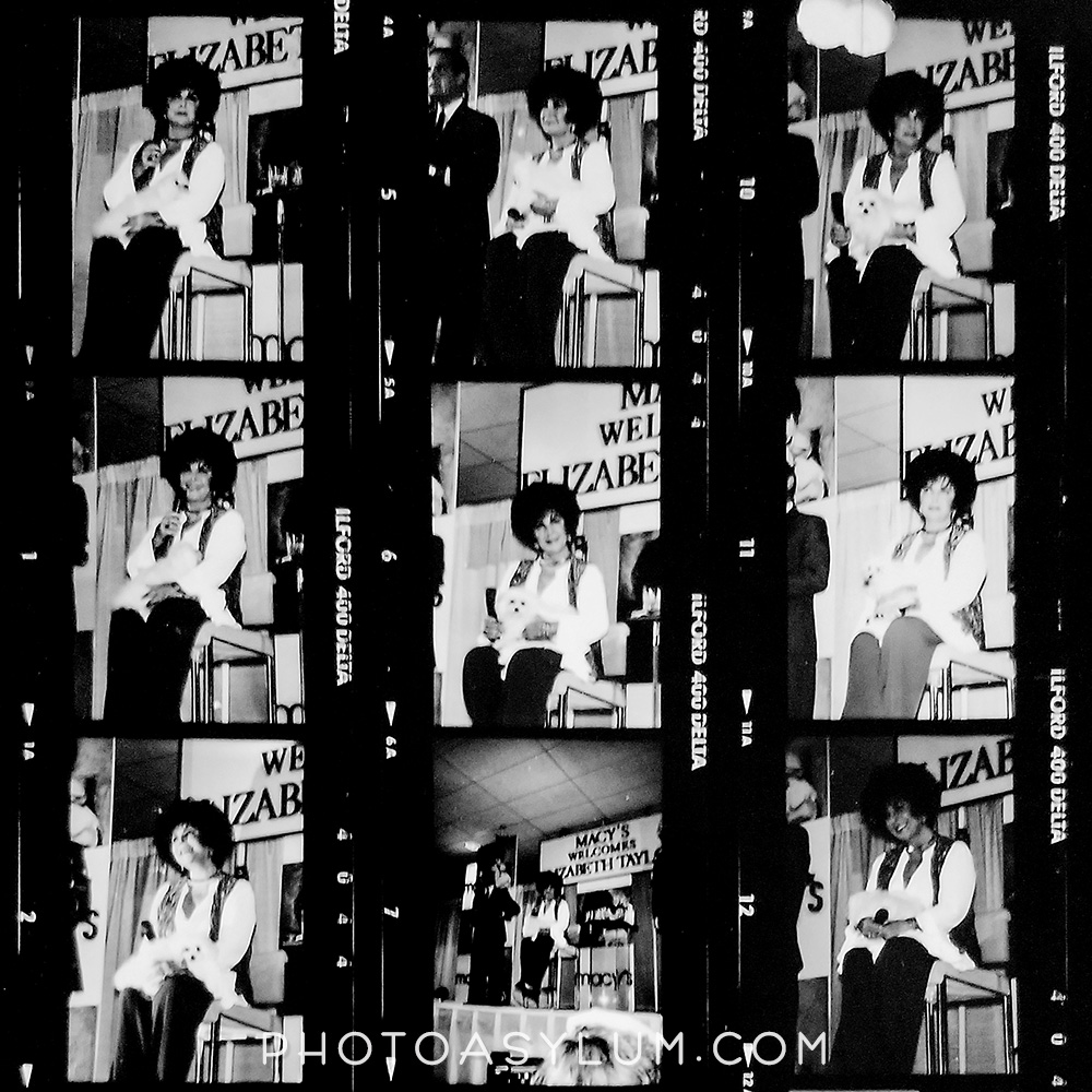 Part of a black and white proof sheet with some of the original film frames of actress Liz Taylor. ©Steven Paul Hlavac. All rights reserved.