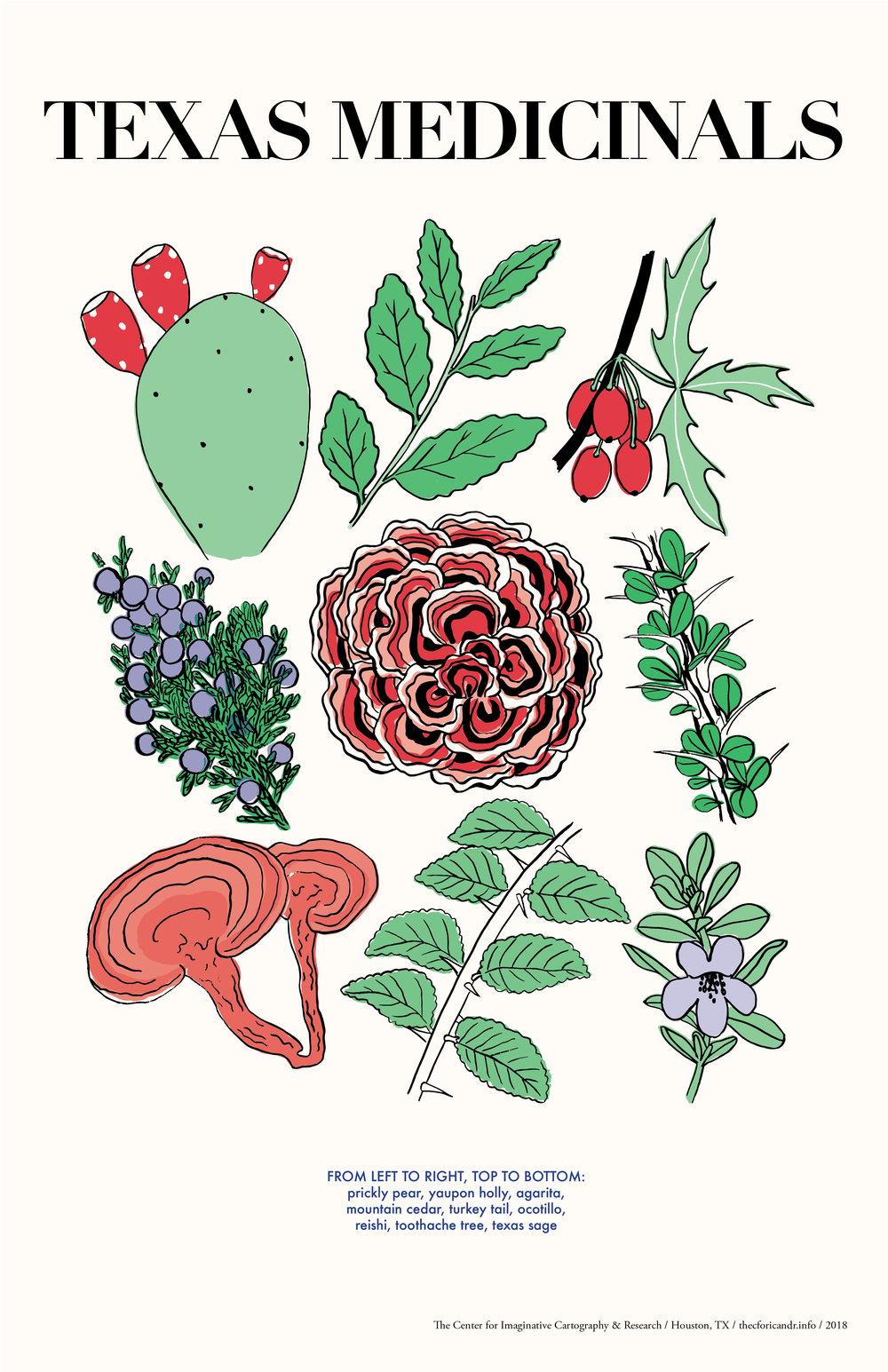 medicinals-color-EXPORT.jpg