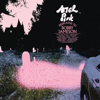 2. ARIEL PINK - DEDICATED TO BOBBY JAMESON  Ik moet erbij verklappen dat de naam Ariel Pink me niks zei tot dit uit kwam, het was een cd die ik steeds in mijn platenzaak zag liggen en besloot te luisteren.  Deze vergelijking zal niet iedereen met me eens zijn, maar wat voor mij in 2015 Tame impala was en in 2016 Pond is dit jaar Ariel Pink geweest. Je weet niet welke kant het op gaat, maar dat maakt je niet zoveel uit. Het lijkt bijna of elk nummer de hoofdrol van het album vervult. Dat klinkt overweldigend, is het ook.  Klinkt als: tja. het voelt soms als Tame Impala of Steve Miller Band. Af en toe hoor je wat Real Estate, Destroyer of DIIV  Luister: Another Weekend