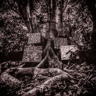 4. KAMASI WASHINGTON - THE HARMONY EP  Dé jazz release die het meeste raakte wat de nieuwste EP van Kamasi Washington. Naast deze uitgave heeft Washington op eindeloos veel albums (met verschillende genres) mee gewerkt. In 2015 bracht deze man het drieuurdurende ''The Epic'' uit. Inmiddels is het nieuwste meesterwerk een EP van slechts 31 minuten. Voor hem genoeg om een muzikale levensles te geven. Voor net iets meer dan een tientje koop je dit bij je lokale platenzaak. Soms ben ik in de war en draai ik kant A en B door elkaar maar zelfs dan blijft het goed. De afsluiter ''The Truth'' is een toetje (of voor gerecht) wat je altijd al hoopte te krijgen.  Klinkt als Mammal heads.  Luister: The Truth
