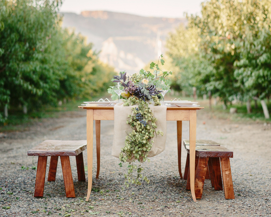 Palisade peach orchard wedding / photo: Cat Mayer Studio