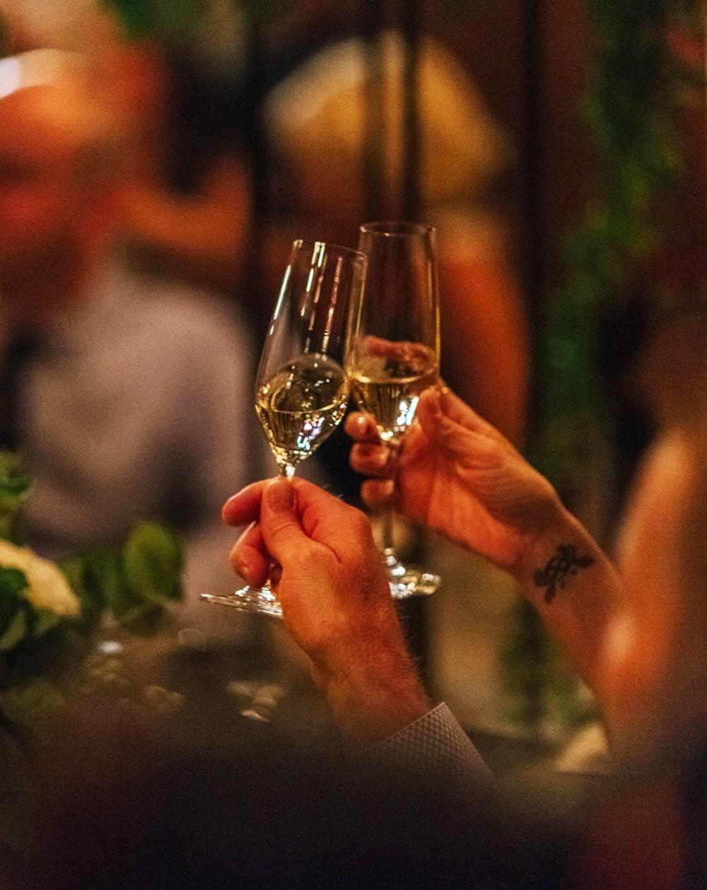 Wedding Champagne toast | Cat Mayer