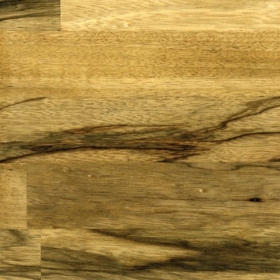 Tiger Walnut