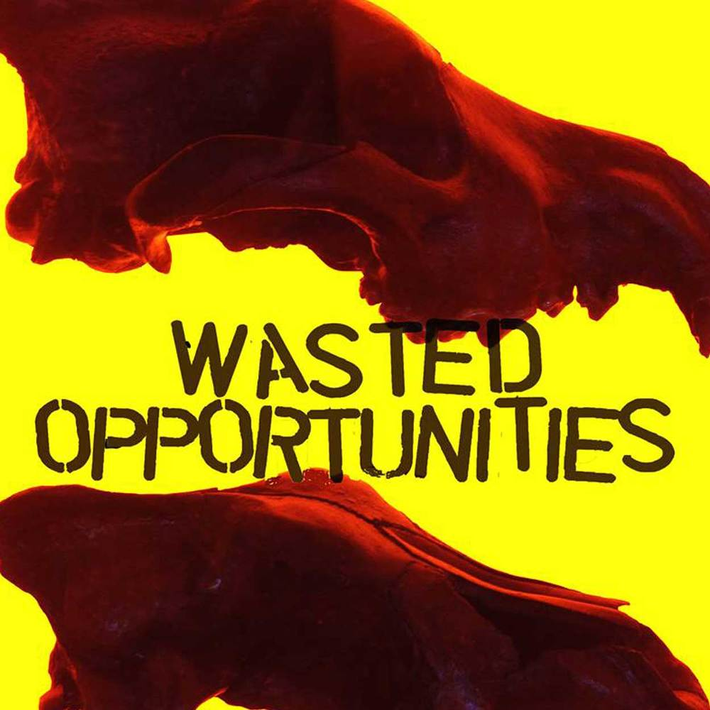 Wasted Opportunities is the primary creative work of its creator Justin George, whose writing has also appeared in Maximum Rocknroll and Razorcake fanzines. Based in Brisbane, this Golden Stapler award-winning DIY punk zine features in-depth interviews, articles and reviews on local & international punk bands. Find out more here.