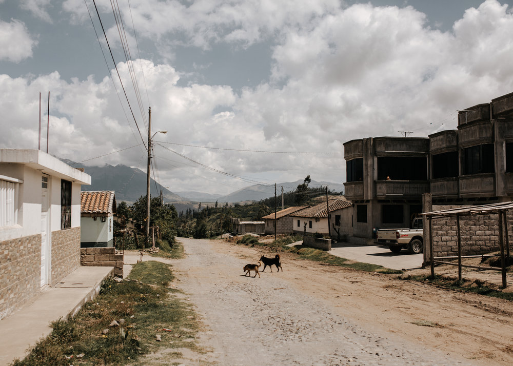 Gualsaqui-11.jpg