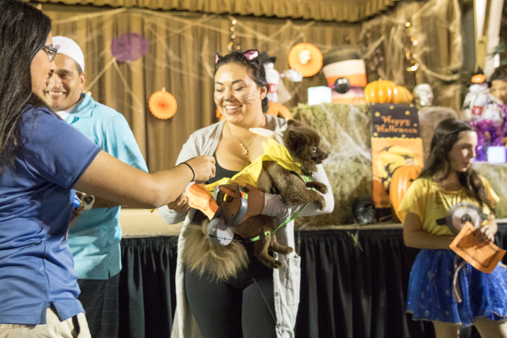 Downey Parks & Rec Halloween Event 2015-68.jpg