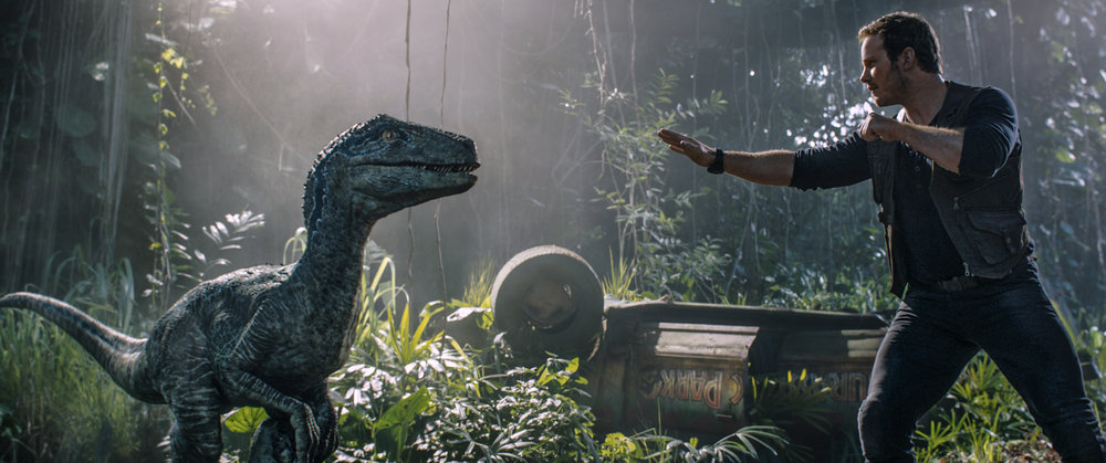 "Owen (CHRIS PRATT) reconnects with Velociraptor Blue in ""Jurassic World: Fallen Kingdom.""  When the island's dormant volcano begins roaring to life, Owen and Claire mount a campaign to rescue the remaining dinosaurs from this extinction-level event.  Welcome to ""Jurassic World: Fallen Kingdom."""