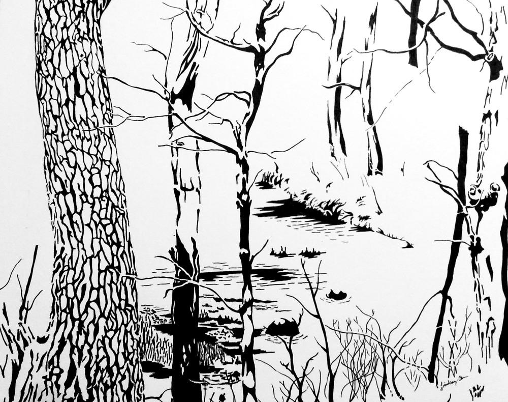 trees_corrected.jpg