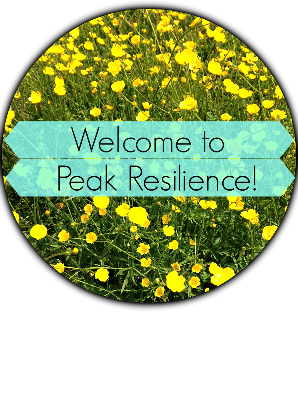 Welcome to Peak Resilience! Therapy for exceptional women in Vancouver
