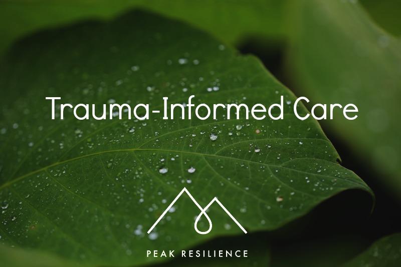 Trauma informed care.jpg
