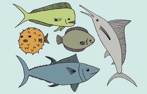 ocean_fish.jpg