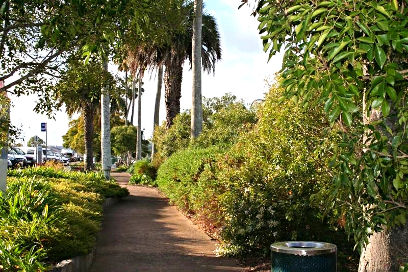 Federation_park_Toowoomba_LARK_Sunshine_Coast_Queensland_Landscape_Architect.jpg