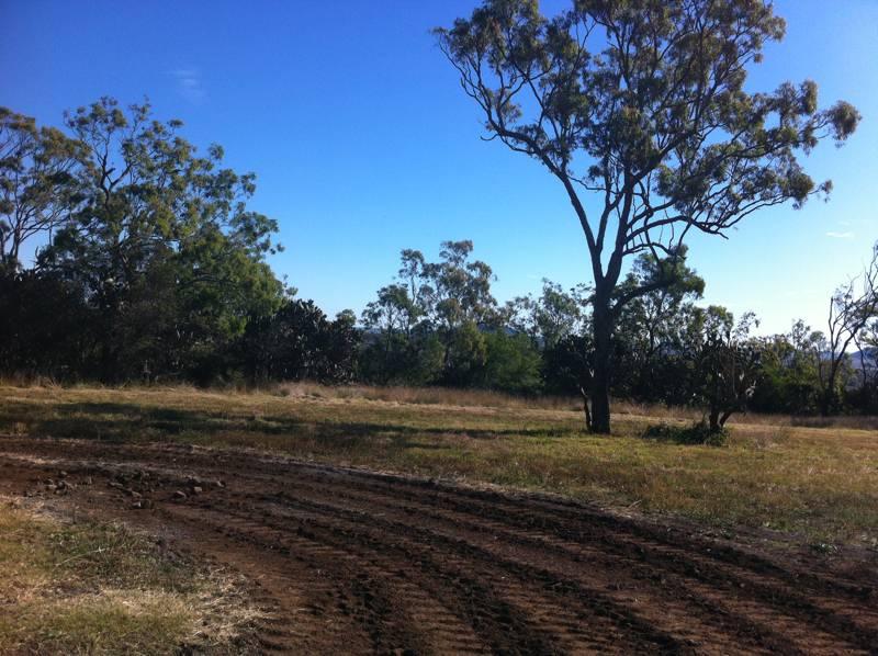 Cranley_Escarpment_Park_Toowoomba_image2_LARK_Sunshine_Coast_Landscape_Architect