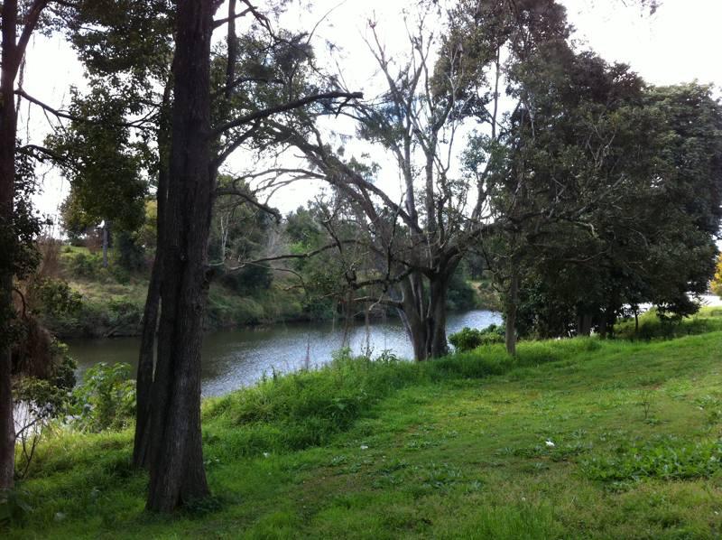 Imbil_Receation_Park_image3_LARK_Sunshine_Coast_Landscape_Architect.jpg