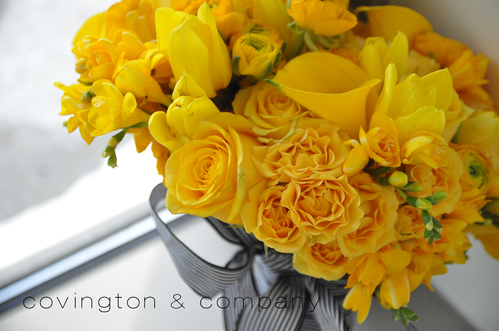 Yellow Rose_Tulip_Freesia_Black and White Ribbon Bouquet.jpg