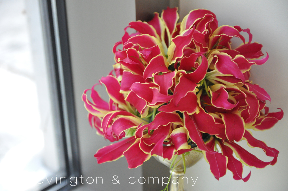 Gloriosa Lily Bouquet.jpg